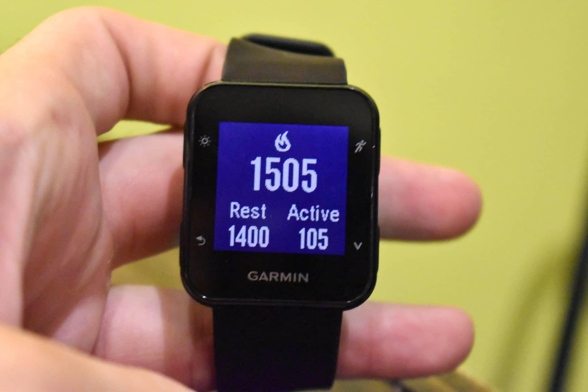 Garmin Forerunner 35 heart rate